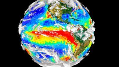 El Niño 2019.